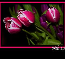 Tulips.... With Love by Denise Wainwright