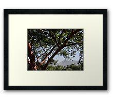 Sierra Madre  Framed Print