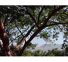 Sierra Madre  Photographic Print