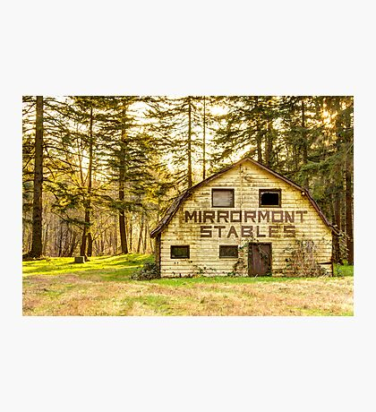 Mirrormont Stables Fades Away Photographic Print