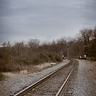 Train Tracks by LocustFurnace