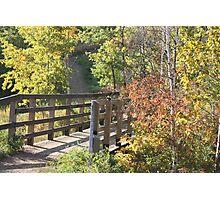 Bridge on Ravine Photographic Print