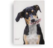 Max, Pastel Dog Portrait Canvas Print