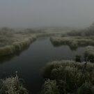 Elk Springs Creek in Fog #1 by Ken McElroy