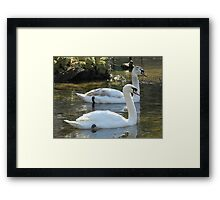 Almost In Sync Framed Print