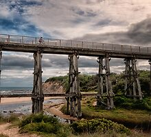 The High Road, Kilcunda, Victoria. by annibels