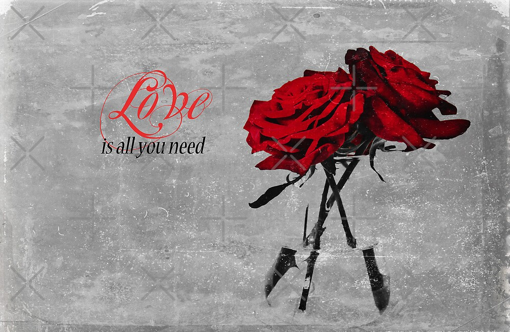 Love Is All You Need by Denise Abé