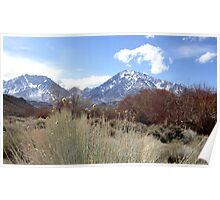 High Sierra Spring Poster