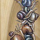 Snail Pile 02 by Fay Helfer