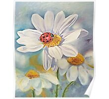 Lady bug on daisy with blue Poster