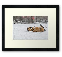 You're kiddin', Right!? Framed Print