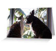 Animal Magnetism Greeting Card