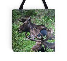 Bull Moose 2 Tote Bag