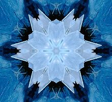 Ice Crystal by kenspics