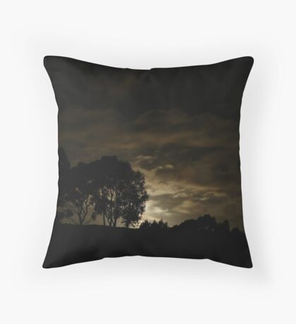 Night Landscape Throw Pillow