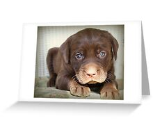 Heart Melter Greeting Card