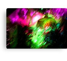 Psychedelic Photography 08 Canvas Print
