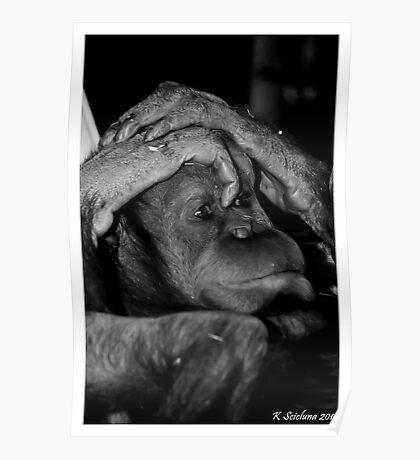 Lazing orang Poster