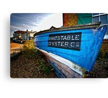 Oyster Catcher Canvas Print
