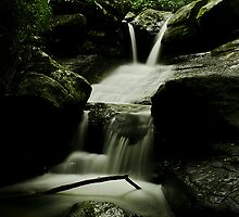 Buderim Upper Falls by Kate Wall