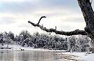 Dripping Ice by Carolyn  Fletcher
