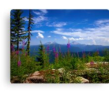 From Beauty To Beauty Canvas Print