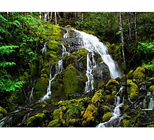 From Any Angle ~ Head Of Horse Creek ~ Photographic Print