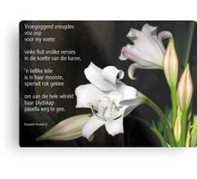 Vreugde is 'n wit lelie Metal Print
