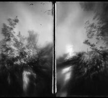 wan by Jill Auville