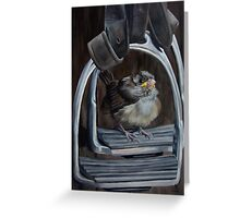 Ticket To Ride - Little Bird Ready to Travel Greeting Card