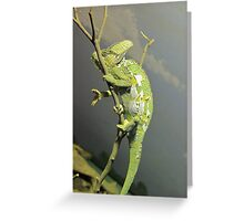 Now You See Me... Greeting Card