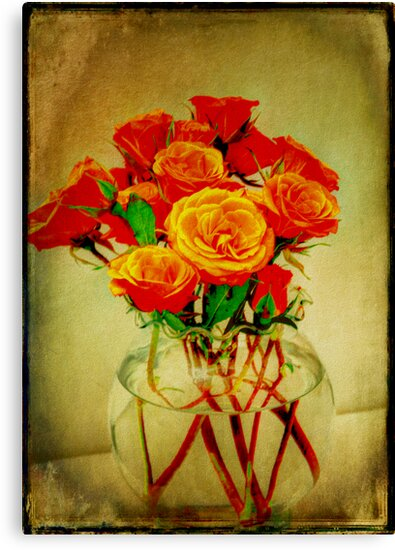 Roses and Textures by glennc70000