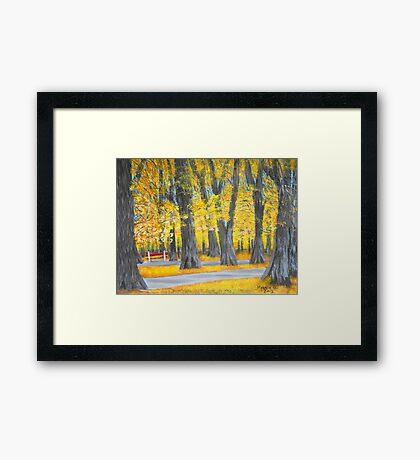 Golden Park Framed Print
