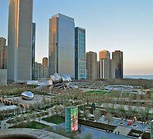 Chicago Skyline by Leslie Belmonti