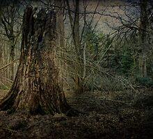 Sleepy Hollow by Dave Godden