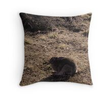 I am not really here, Usuhaia National Park Throw Pillow