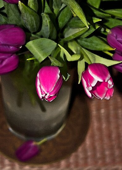 Tulips by Denise Wainwright