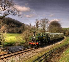 Pannier Tank on the Dart Valley by Rob Hawkins