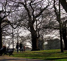Old Couple, Young Couple, trees  by rsangsterkelly