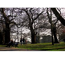 Old Couple, Young Couple, trees  Photographic Print