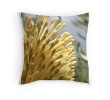 Australian Native Flower Throw Pillow