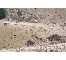Dry Land Photographic Print