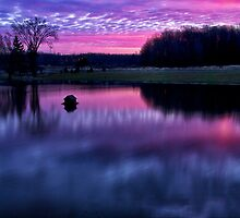 Red Sky at Morning by Kathy Weaver