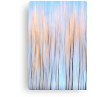 Autumn colours of a willow Canvas Print
