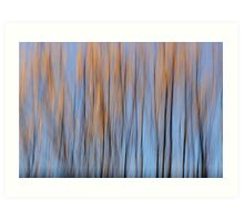 Autumn colours of a willow Art Print