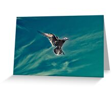 Caught Midflight Greeting Card