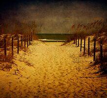 Dream Land by Cynthia Broomfield
