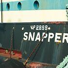 Snapper by Daryl Stultz