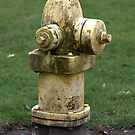 Fire Hydrant by Soulmaytz
