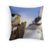 Chickadee Bump  Throw Pillow